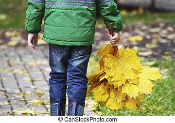 子供, 公園, autumn., 歩く
