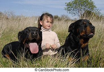 子供, 危ない, 犬