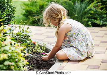 子供, 手, のまわり, 緑, 若い, 花, plant.