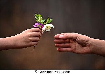 子供, 手, 寄付, 花, へ, 彼の, 父