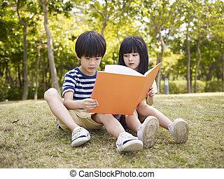 子供, 本, アジア人, 読書, 屋外で