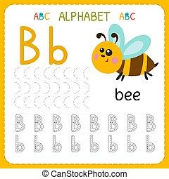 子供, kindergarten., アルファベット, b., 練習, 執筆, worksheet, 手紙, 追跡, 練習, 幼稚園