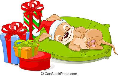 子犬, クリスマス