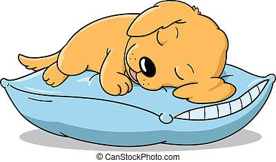 子犬, 睡眠