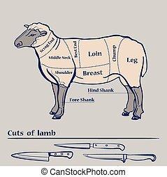 子羊, 図, ベクトル, 切口