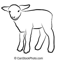 子羊, 白, シルエット, 隔離された