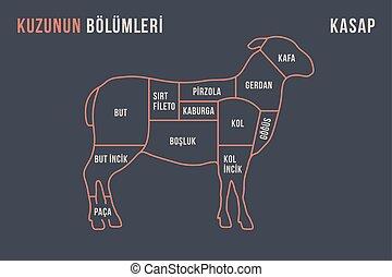 子羊, 肉, ポスター, -, 肉屋, 図, cuts., 案