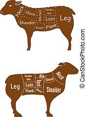 子羊, 詳しい, マトン, 肉屋, 図, 切口, ∥あるいは∥