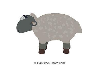 子羊, 面白い, eps10., 隔離された, バックグラウンド。, 白
