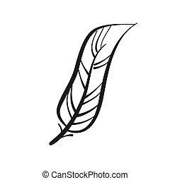 孔雀, バックグラウンド。, 定型, 手, feather., 羽, 白, 引かれる