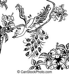 孔雀, 木の枝