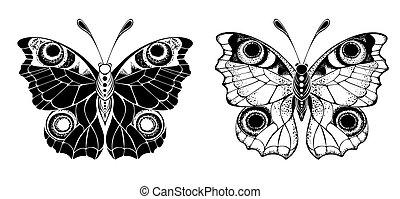 孔雀, 蝶, 2