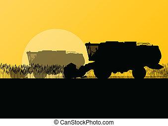 季節的, 収穫機, 現場, イラスト, フィールド, ベクトル, 穀粒, 背景, 農業, コンバイン, 農業, 風景