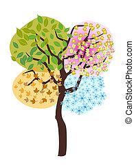 季节, 树