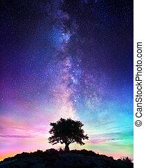 孤独, 星が多い, 夜, -, 木, 方法, 乳白色