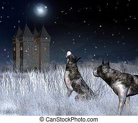 孤獨, 城堡, 在, 冬天, 月光