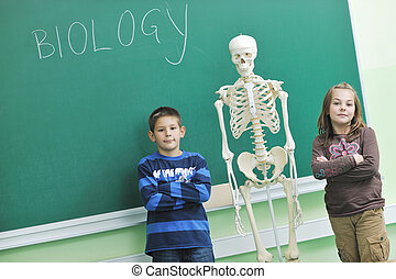 学びなさい, 生物学, 中に, 学校