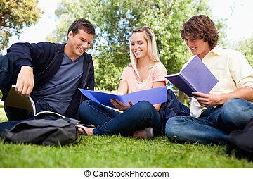 学生, 公园, angle-shot, 三, 低