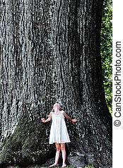 孩子站, 在下面, a, 大的樹