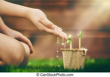孩子, 关心的, 植物