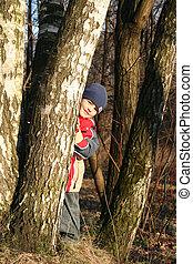 孩子, 在, 春天, 木頭