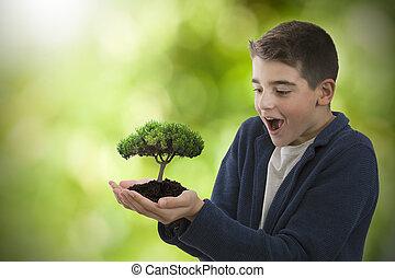 孩子, 惊奇, 带, the, 年轻, 树, 在中, the, 手