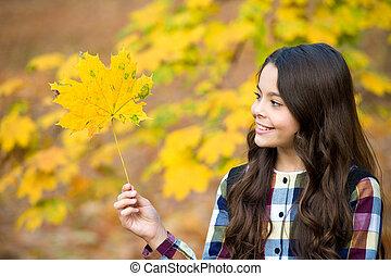 孩子, 黄色, 性质, 微笑, 枫树树叶