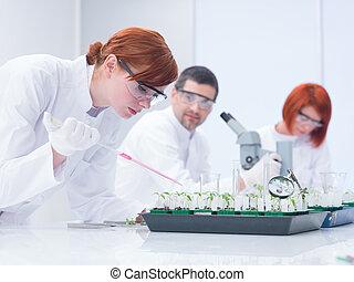 學生, 研究, 實驗性