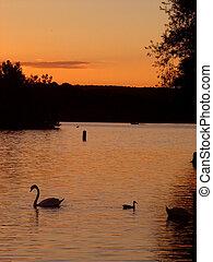 安大略, 日落, 湖