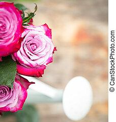 完全, ピンクの花, バラ, 木, 屋外で