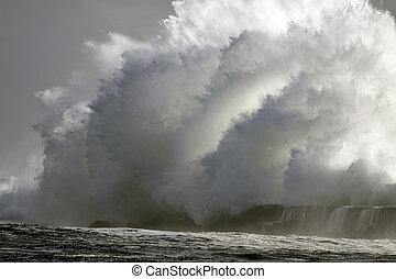完全, 嵐, 波