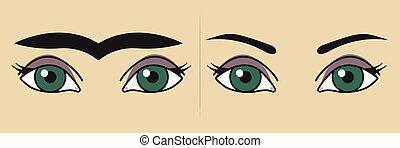 完全, 眉毛, 審美的である, 美容術