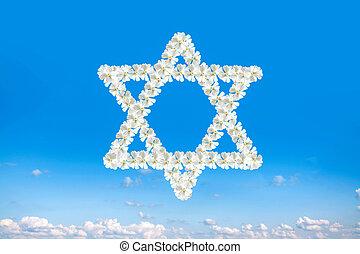 宗教, david, 星, スカイブルー, ユダヤ教, シンボル