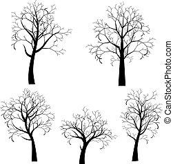 定型, 木, シルエット