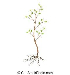 実生植物, 木, 平ら, アイコン