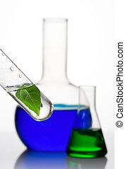 実験室 ガラス製品, 様々, 植物