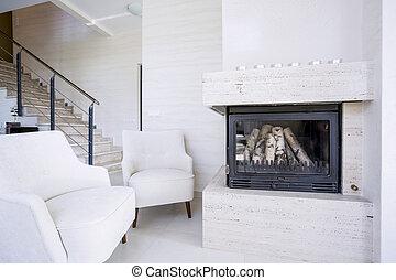 客廳, 由于, 火地方