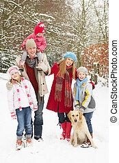 家庭走, 通过, 多雪, 森林地