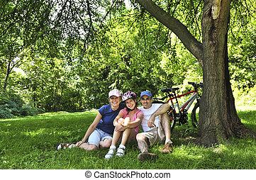 家庭, 休息, 在中, a, 公园