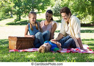 家庭, 在上, a, 野餐, 在公园