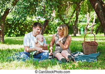 家庭, 有野餐, 在公园中