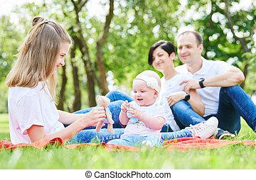 家庭, 由于, 孩子, 在, 夏天, park., 愉快, parenting