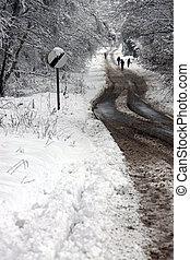 家族ハイキング, 雪が覆われる, 前方へ, 道, 冬
