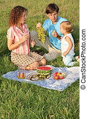 家族, 上に, ピクニック