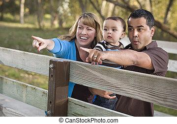 家族, 公園, レース, 混ぜられた, 遊び, 幸せ