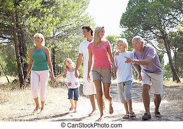家族, 公園, 祖父母, 歩きなさい, によって, 親, 子供