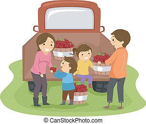 家族, 収穫する, りんご