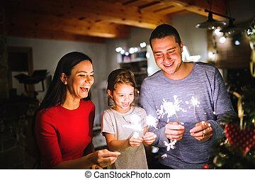 家族, 花火, 若い, 時間, home., クリスマス