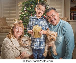 家系, 若い, 混合された 競争, 前部, クリスマス