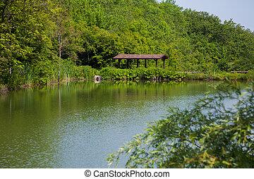 家, おおい, 川, 森林